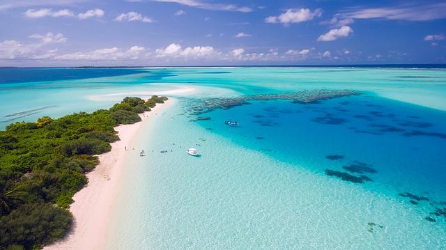 tropický ráj.jpg