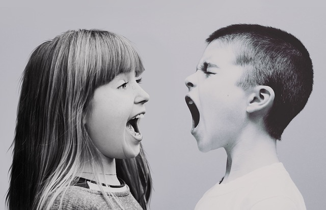 Spor medzi deťmi.jpg